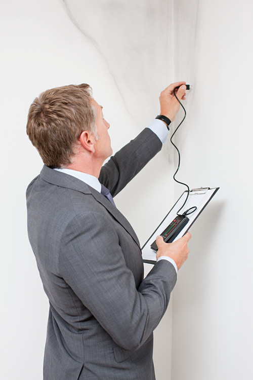 Mature man examining damp patch on wall Image downloaded by anonymous anonymous at 11:51 on the 21/03/16