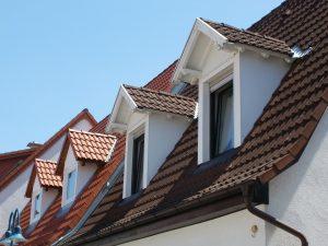 home-windows