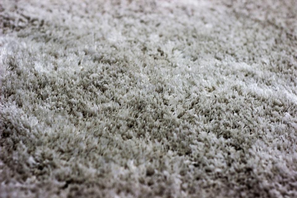 what carpet should I install
