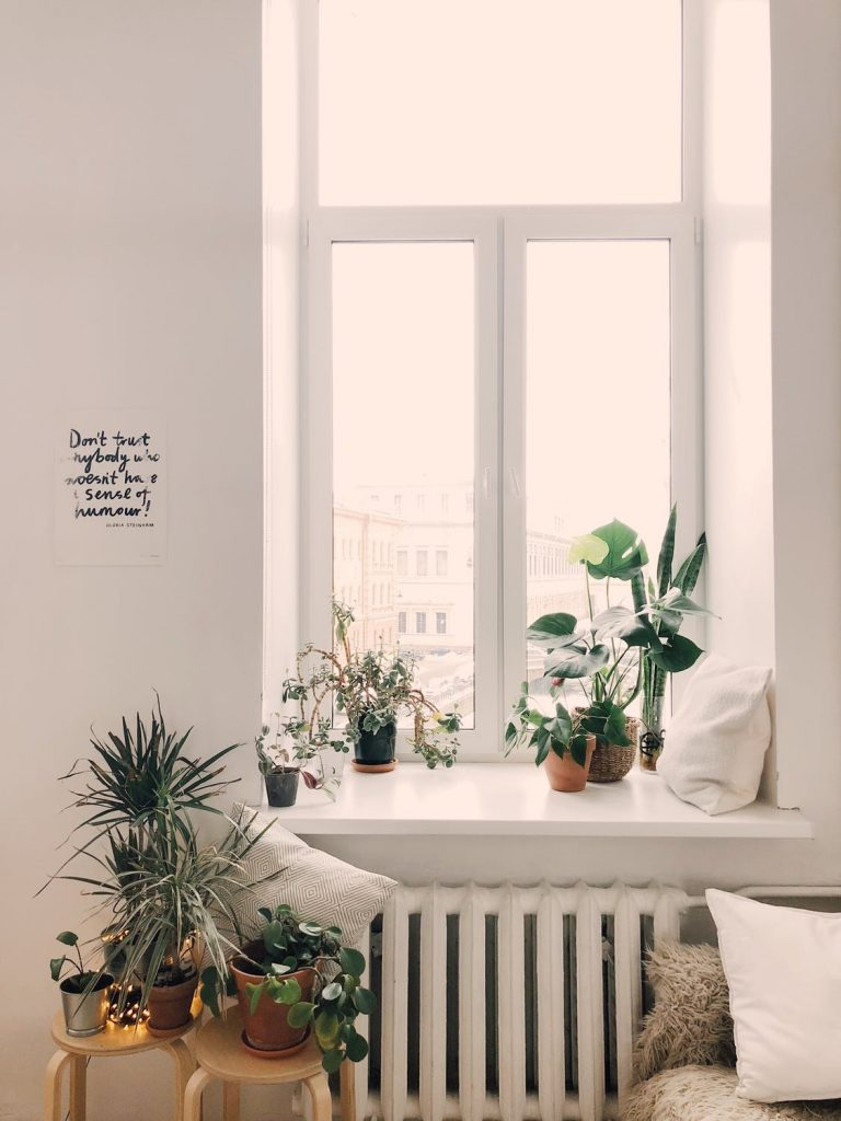 Indoor Jungles, Tile Art and Festoon Lights Set to be the Biggest Home Trends of 2020