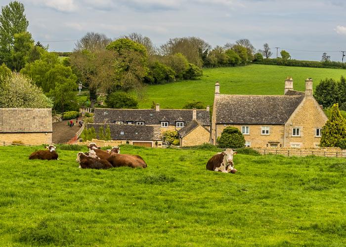A rural scene in Rutland, UK