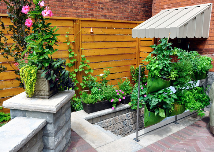 Living Wall on Patio