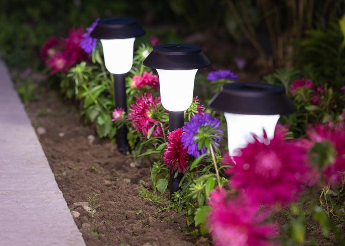 Solar-Powered Garden Lighting